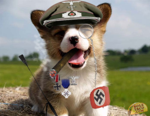 Police Scotland Holocaust-Denial and Nazi Dogs & Police Scotland Holocaust-Denial and Nazi Dogs u2013 secular detective